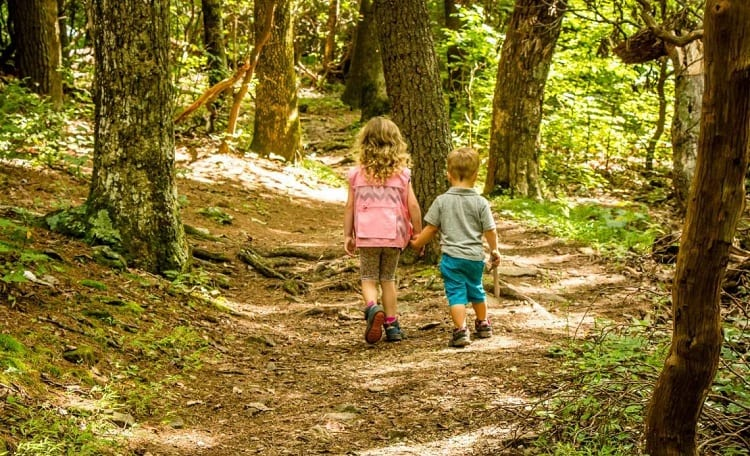 kids hiking in the nature