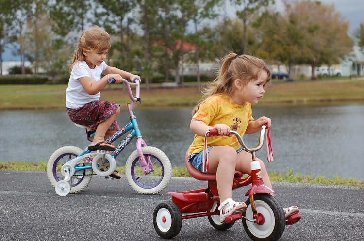 DIFFERENCE BETWEEN BIKES AND TRIKES?